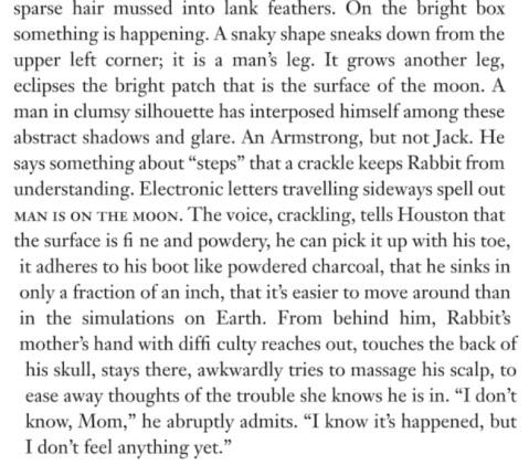 Updike Moon